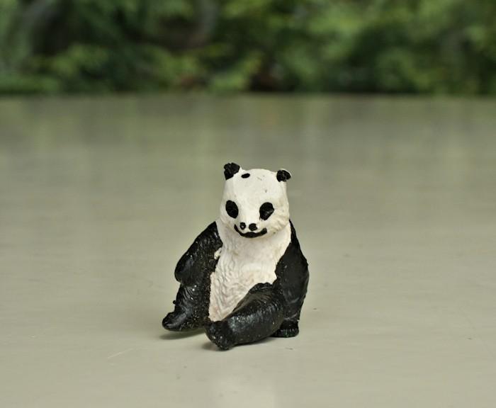 Pandi-Panda-LLF