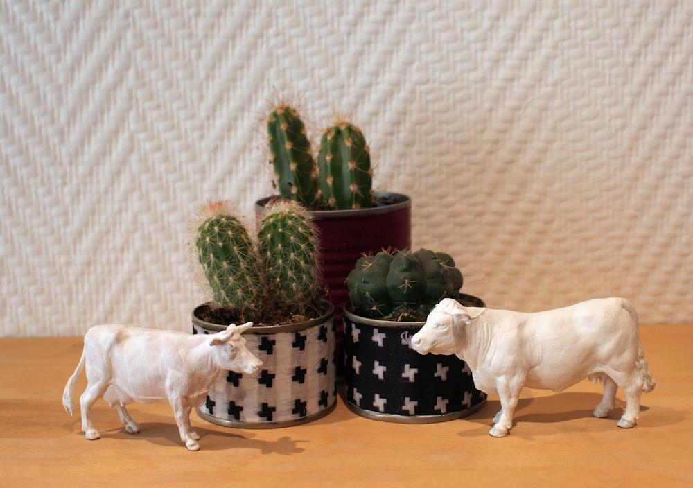 DIY - Jardinière pour succulentes en matériaux de récup